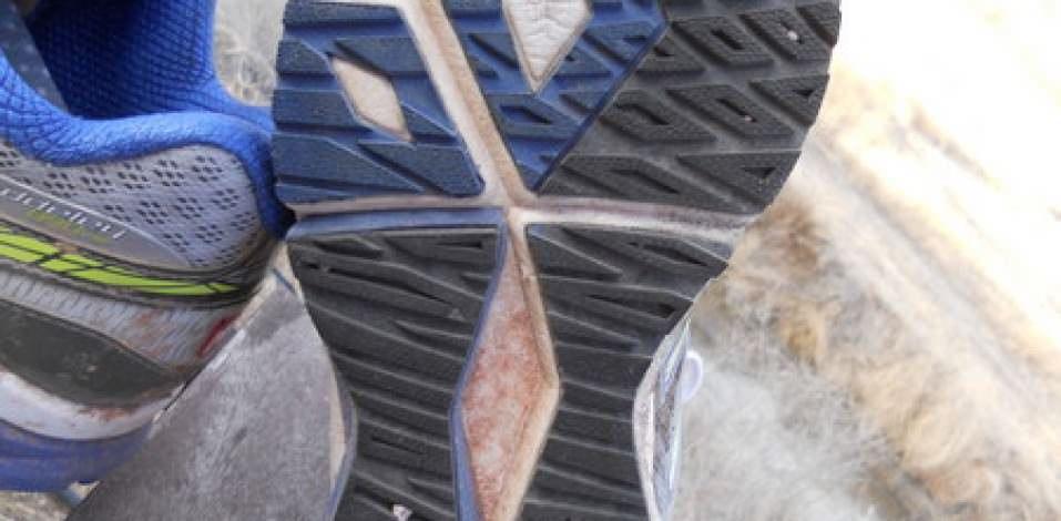 Nuevo Equilibrio Barringer Precio 890v2 5h77wdn