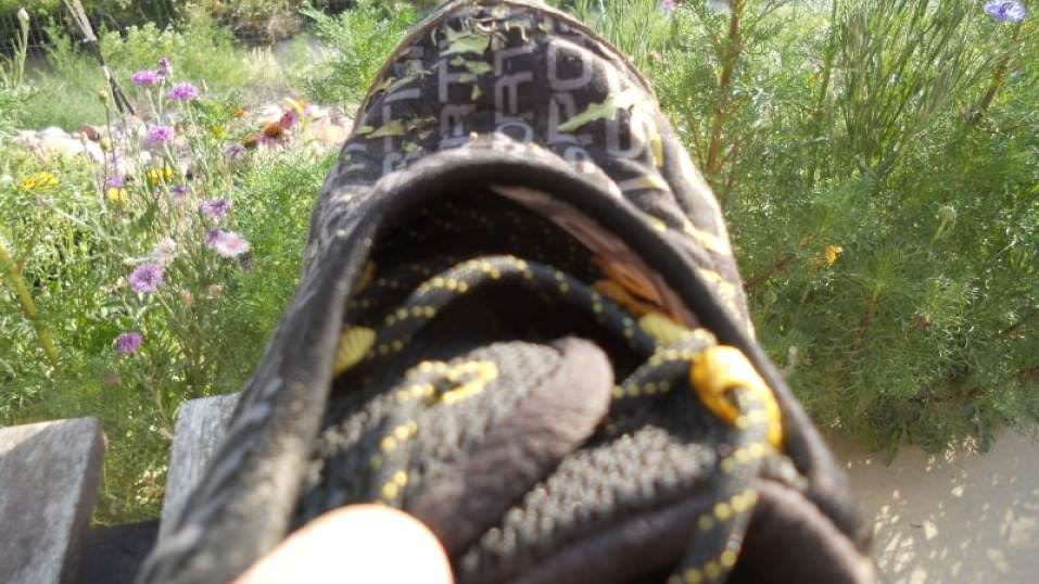 La Sportiva Vertical K Review Trail Running Shoes Guru