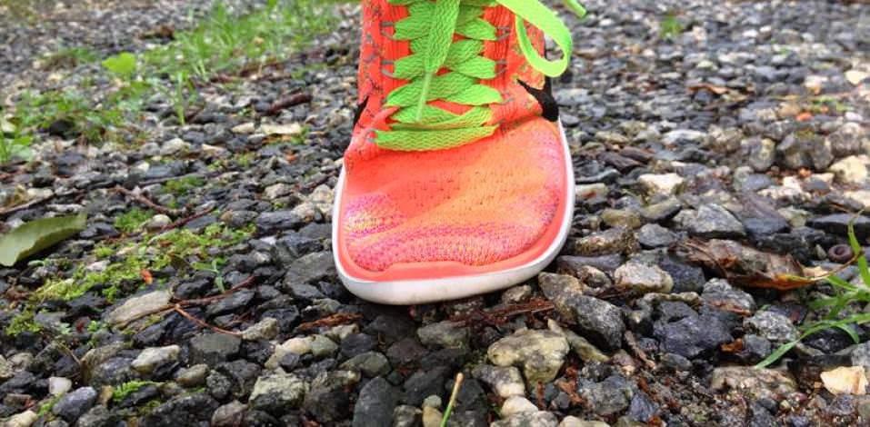 Nike Pega Los Zapatos 4,0