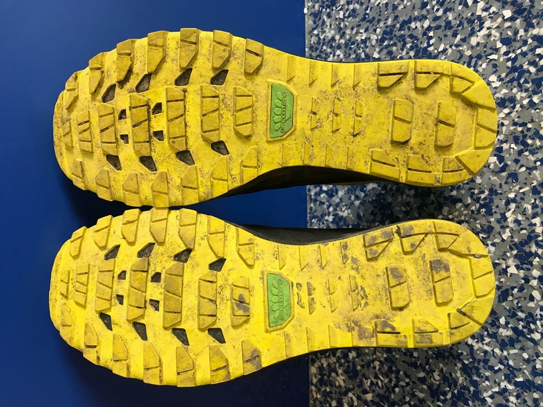 Asics Shoes Running Room
