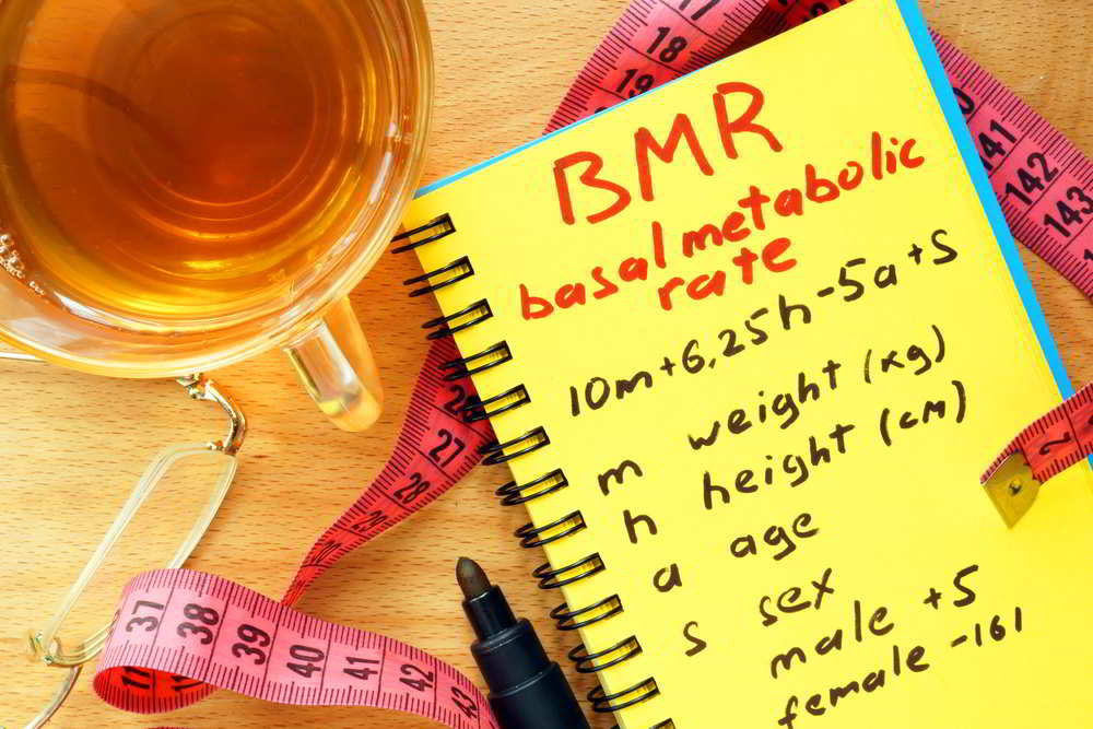 2. Basal Metabolic Rate