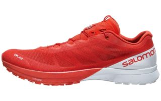 salomon stability trail running shoes