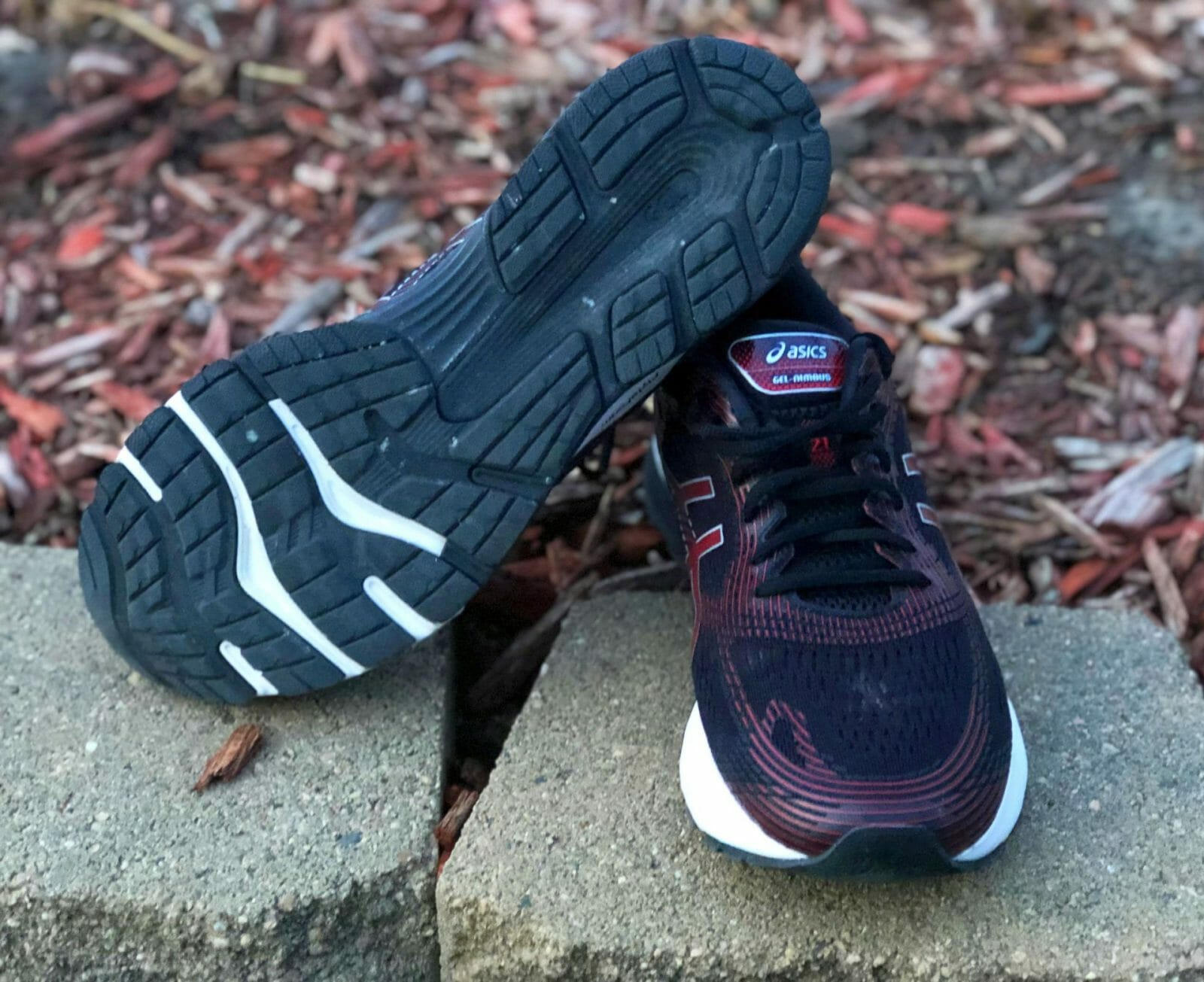 Asics Gel Nimbus 21 Review | Running Shoes Guru